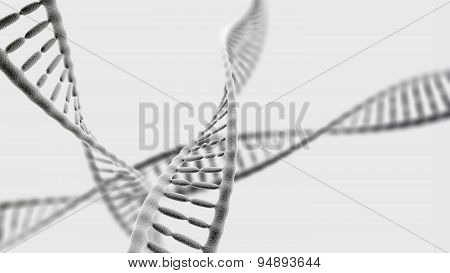 Dna Chains On The Light Background
