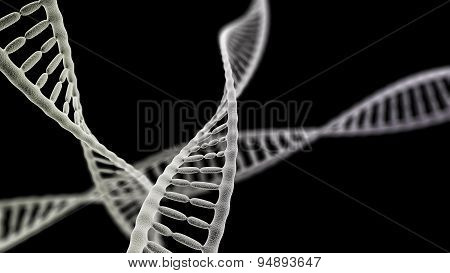 Dna Chains On The Black Background
