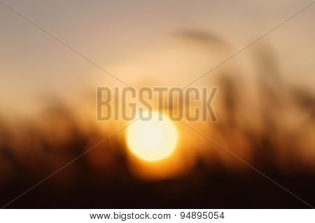 Sun At Sunset.