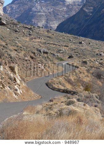 Curvy Mtn Road