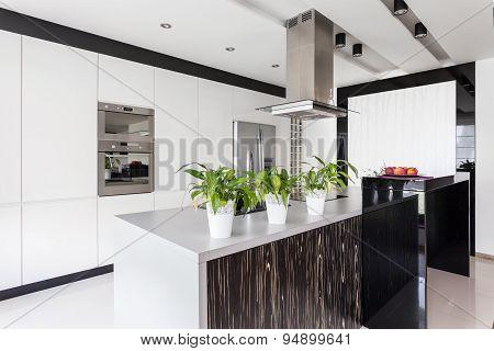 White Kitchen Unit