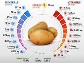 foto of carbohydrate  - Infographics about nutrients in potato - JPG