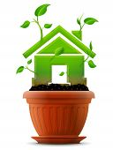 pic of bine  - Stylized plant in shape of home sign in ground - JPG
