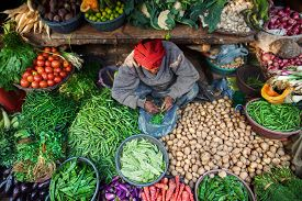 picture of indian  - A man surrounded by vegetables and greens at his place at Indian Bazaar - JPG