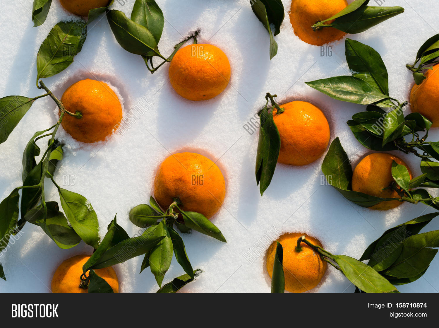 symbolism in tangerine A detailed description of the important objects and places in tangerine.