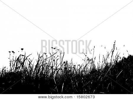 Vector grass.
