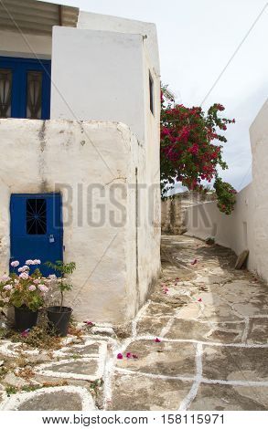 street scene classic Greek Island architecture with painted walk and flowers Lefkes village Paros Island Cyclades Greece