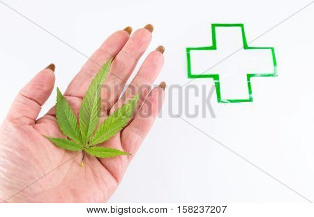 Cannabis plant and medical sign. Alternative medicine abstract