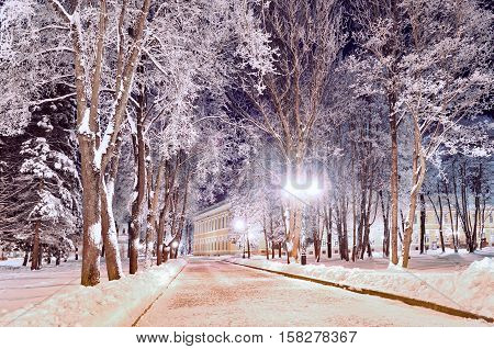 Winter colorful landscape - winter alley in the park with winter frosty trees and bright lanterns. Winter wonderland scene with winter trees covered with frost in the alley- colorful winter night view