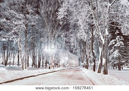 Winter night landscape- winter alley in the park with winter frosty trees and shining lanterns. Winter wonderland scene with winter trees covered with frost in the alley- colorful winter night view