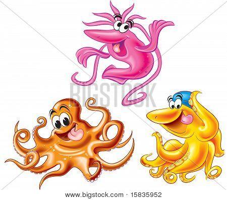 Calamar y pulpo