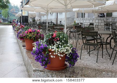 Large pots of flowers adorn the streets