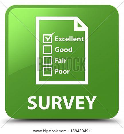 Survey (questionnaire Icon) Soft Green Square Button
