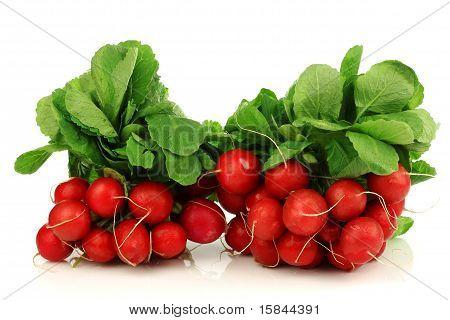 Bundles of fresh radishes