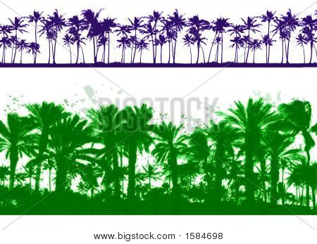 zwei palm Tree designs