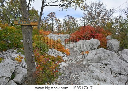 Autumn colours on display in the Carso karst limestone area of Friuli near Aurisina in north east Italy. This is part of a World War One walking trail as the area was then on the frontline. The sign indicates the presence of a cave.