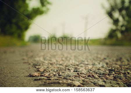 Summer Country Road With Trees. Village Background