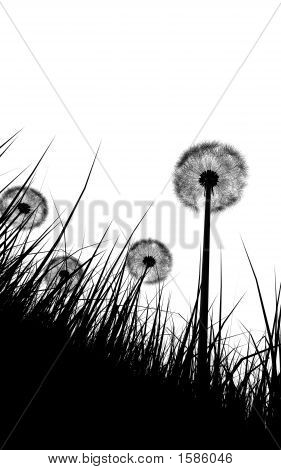 Black And White Silhouette Of Grass And Flowers