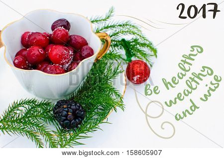 New Years Wishes 2017 Be Healthy, Wealthy and Wise Resolution Holiday Greeting Card Nature Background with Fresh snow and Cranberry outdoors in vintage tea cup - part of a series