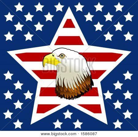 Stars Eagle Art