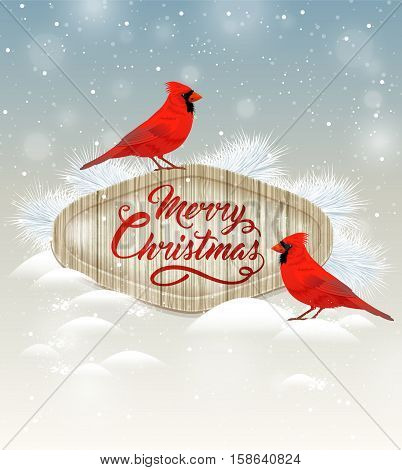 Christmas background with two cardinal birds and white fir branch. Merry Christmas lettering.