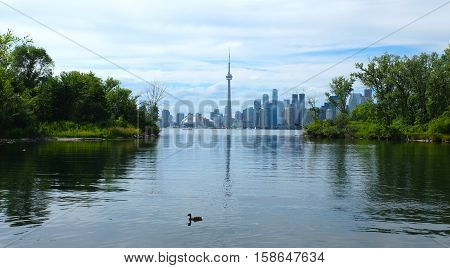 View of the Toronto skyline in Ontario, Canada.