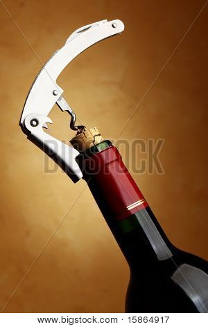 Bottle With Cork-screw