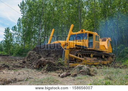 Preparation for planting trees. Eradicating forest with a bulldozer.