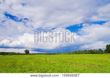 Grass Land Green Plain