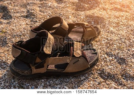 Brown colored sandals. Sand and crushed seashells. Spend summer holidays on island. Path of adventurer.