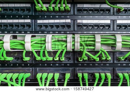 Server rack with green internet patch cord cables connected to patch panel in server room