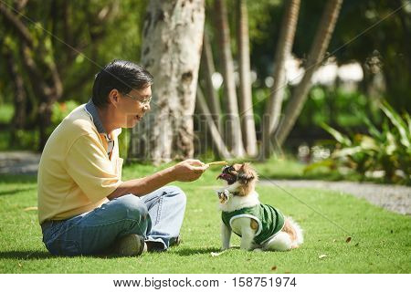 Asian senior man giving treat to his little dog