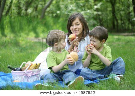 Family Picnic