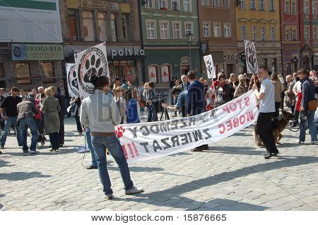 Protest Against Violence In Poland