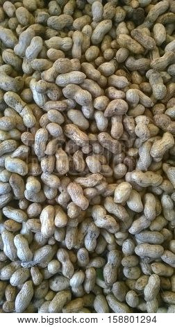 fresh peanuts in the shell at the Bazaar