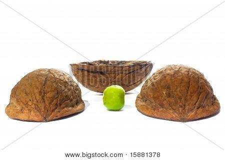 Three shells and a pea