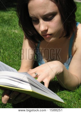 Reading In The Grass.