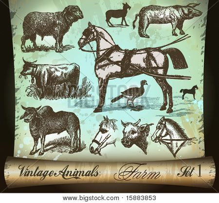 Vintage Animals Collection: Farm. With Antique distressed parchment background