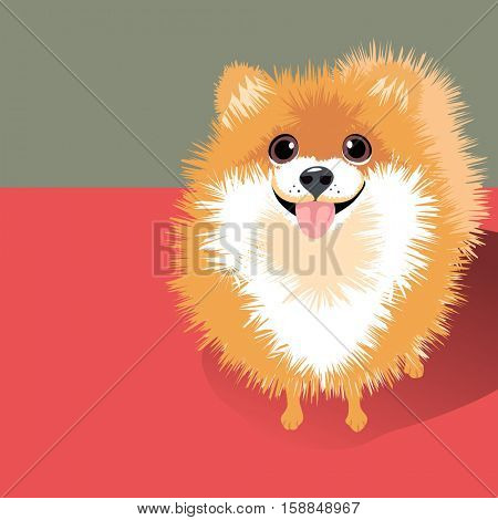vector illustration of a happy funny fluffy Pomeranian dog. Space for text. For posters, cards, banners, t-shirts
