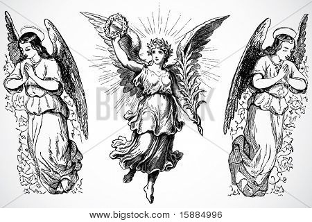 Vektor-Engel