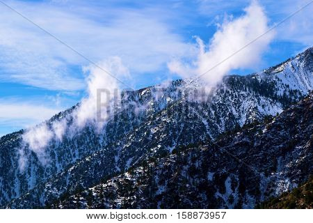 Clouds above a mountain ridge with a Pine Forest covered in snow taken in Mt Baldy, CA