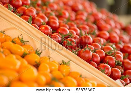 Close-up detail of fresh red and orange cherry tomatoes on sale at a local farmer's market. Agriculture and organic food concept.
