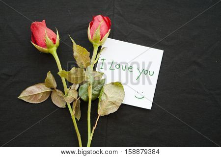 i love you messages card with red rose on background black