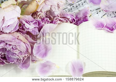 Petals of pink withered peonies are on the notebook with notes as background