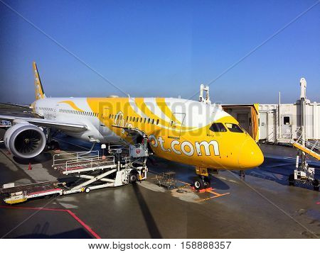 TOKYO JAPAN - 22 NOV 2016 : A Scoot air aircraft parking at dock prepare to fly to Bangkok in Narita airport on Nov 22, 2016 in Japan.