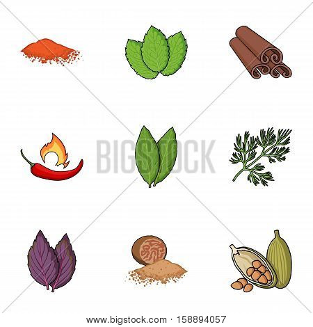 Herb and spices set icons in cartoon style. Big collection of herb and spices vector symbol stock