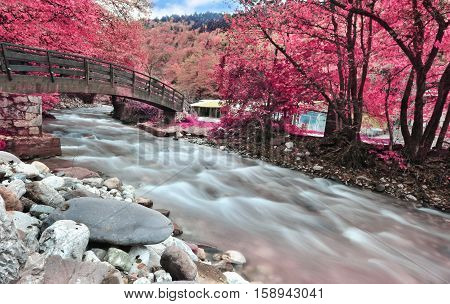 long exposure - infrared photography - river at Karditsa forest Thessaly Greece