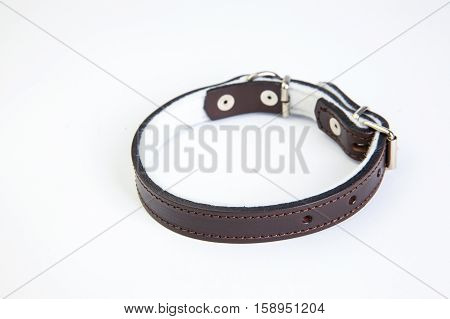 Leather brown dog collar on a white background