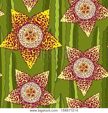 Vector seamless pattern with outline Stapelia flower and stems. Elegance floral background in contour style with succulents for summer design and textile.
