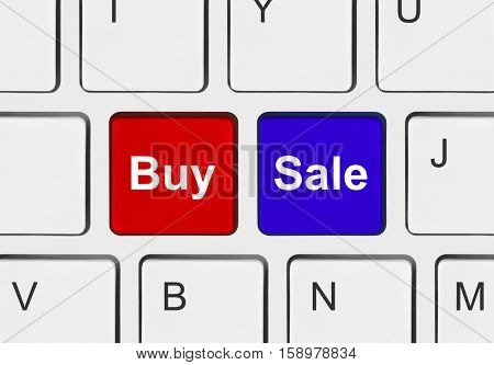 Computer keyboard with two business keys - e-commerce concept - 3D illustration